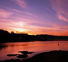 Sunset Over Bear Cove by Gail Bridger