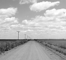 Down the Dirt Road by FamlyPhoto