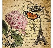 vintage paris hydrangea floral botanical art  Photographic Print