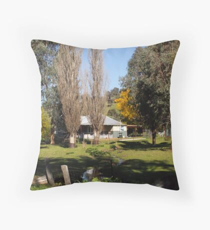 Home in the valley Throw Pillow