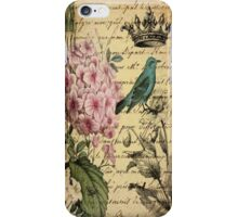 vintage paris hydrangea floral botanical art iPhone Case/Skin