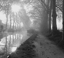 Misty morning canal du Midi Capestang France by Paul Pasco