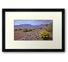Kimberly Hill Wild Flowers Framed Print