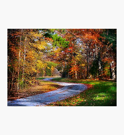 """""""A Road Less Traveled"""" Photographic Print"""