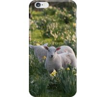 Spring Lambs #1 iPhone Case/Skin