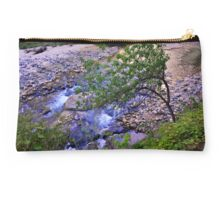 Clinging Studio Pouch