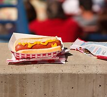 Baseball - It's Not a Game Without a Hotdog & Seeds by Buckwhite