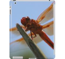 Smiling Dragonfly Iphone Case iPad Case/Skin