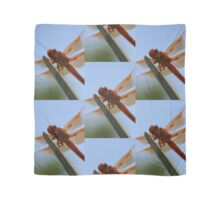 Smiling Dragonfly Iphone Case Scarf