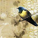 Blue Yellow Thrush Bird - Chinese Painting Art by scottorz