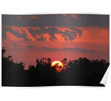 Sunset behind the trees Poster