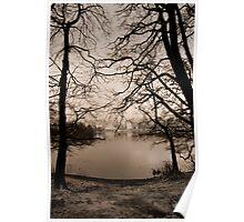 Esthwaite Trees in Mist Poster