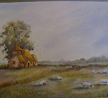 romney marsh  by Jill Towers
