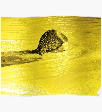 Liquid Gold Poster