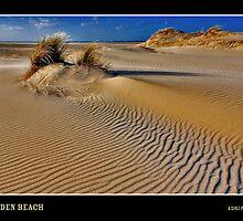 Golden Beach by Adri  Padmos