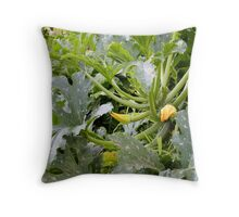Courgette Bed Throw Pillow