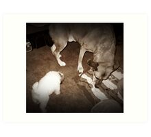 Meet your new brother Art Print