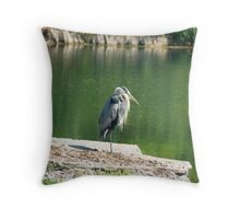 Fishing the Canal Throw Pillow