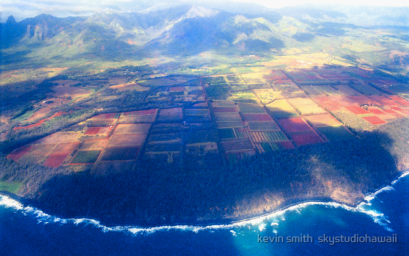 The Garden Isle by kevin smith  skystudiohawaii
