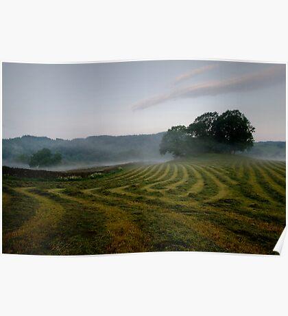Esthwaite Fields Poster