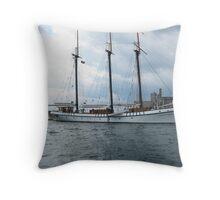 Empire Sandy Throw Pillow