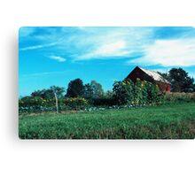 060507-30 Canvas Print