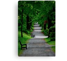 Path in The Park Canvas Print