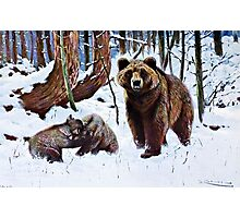 Brown Bear with Cubs Art Photographic Print