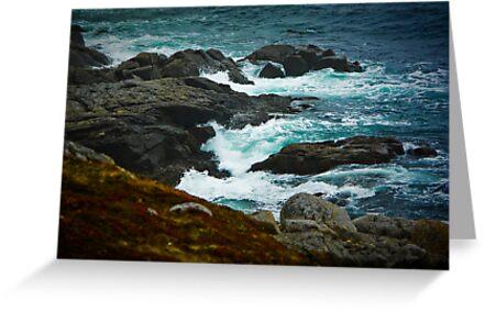 Shad Bay Shore by Charles Plant