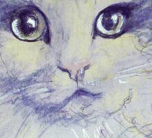Pop Cat Series 01 Sticker