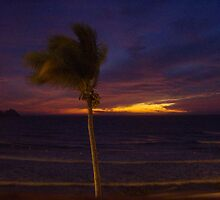 Mexican Sunset by knottynikki