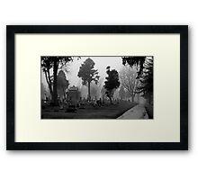 010409-15BW Framed Print