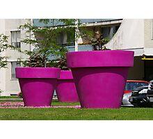 Belonging to the Jolly Green Giants Garden................ Photographic Print