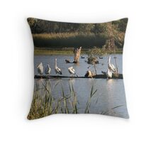 Birds of a Feather, Moorook, South Australia Throw Pillow
