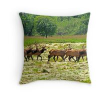 Eight Bull Elk All in Velvet  Throw Pillow