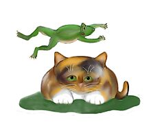 Leap Kitty played by Frog Photographic Print