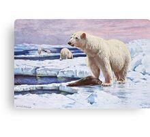 Polar Bears on Ice Floes Art Canvas Print