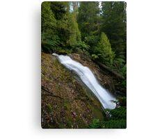Acheron Falls. Canvas Print