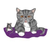 Kitten and Mouse wash Paws Photographic Print