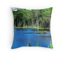 A Pond in Maine Throw Pillow