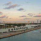 Let's go to Miami Beach by julie08