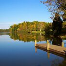 Blue Skies at Mill Creek Lake  by Ginny York