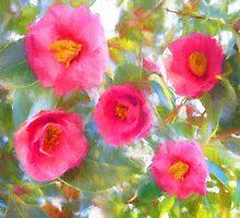 French Magnolia by garyguthrie