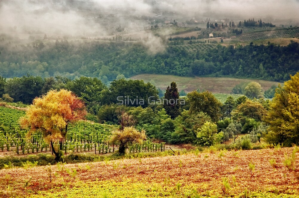 Autumnal hills by Silvia Ganora