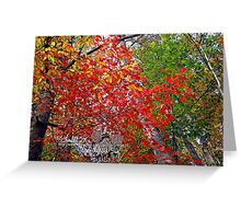 the flamin' maple Greeting Card
