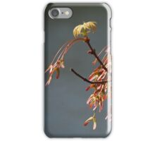 New Maple Leaves iPhone Case/Skin