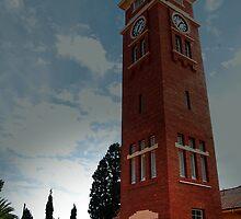 Heathcote tower by Melinda  Ison - Poor