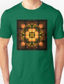 Kaleidoscope 071609 T-Shirt