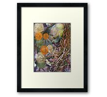 embroidered pebbles I Framed Print
