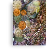 embroidered pebbles I Canvas Print